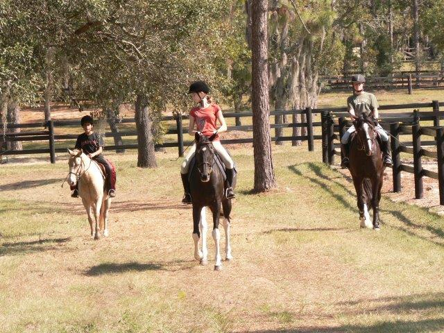 Horseback Riding in Citrus County